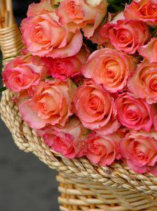 Róże w koszyku